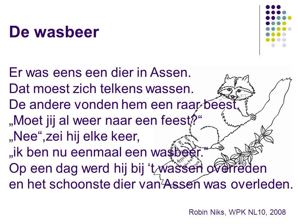 De wasbeer Er was eens een dier in Assen.