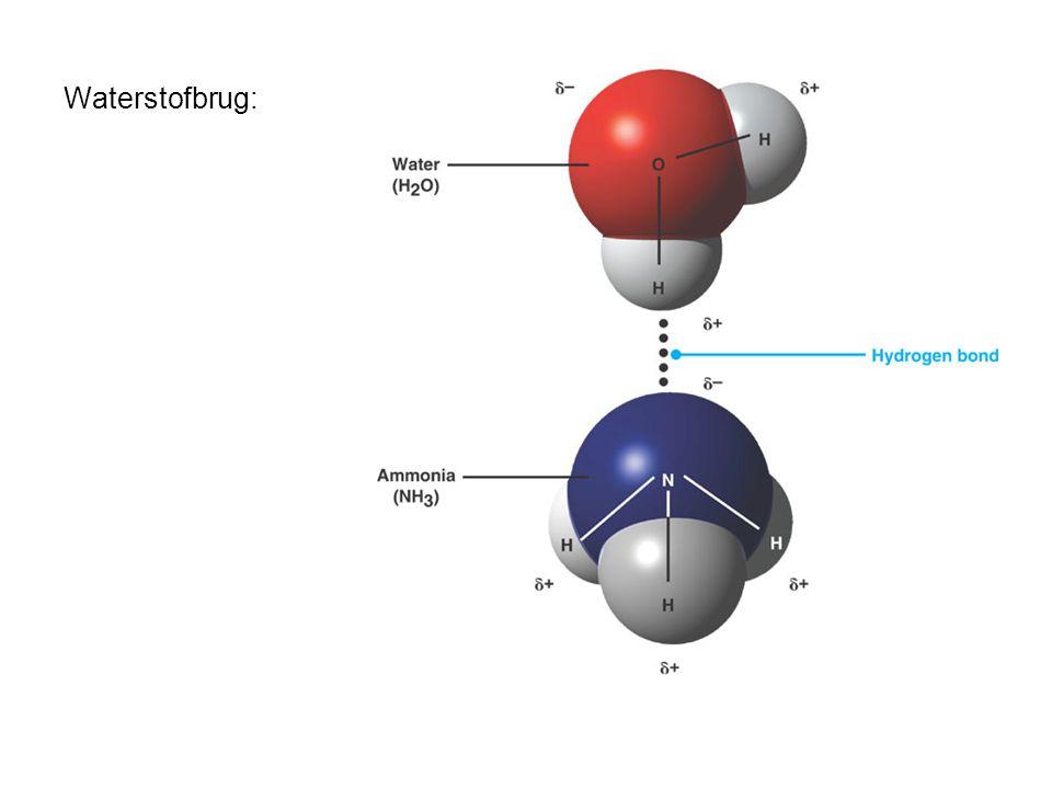 Waterstofbrug: Aantrekkingskracht tussen een Hδ+ van het ene molecuul en een negatief geladen N- of O-atoom van een ander molecuul.