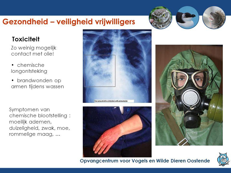 Gezondheid – veiligheid vrijwilligers