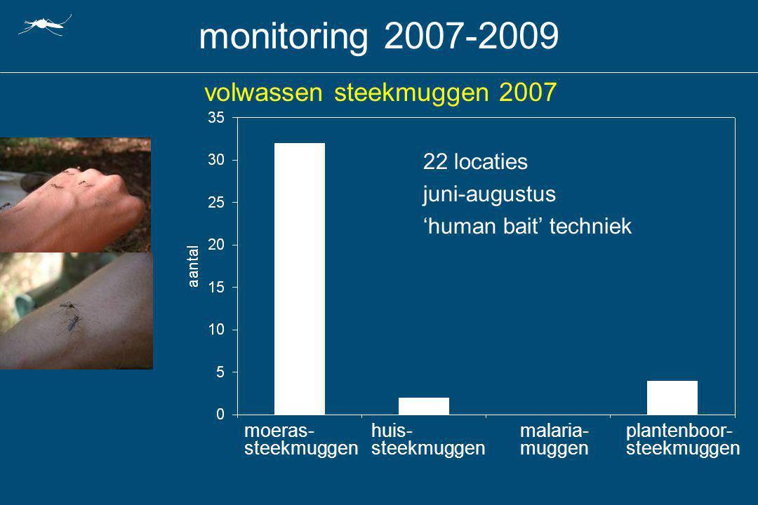 volwassen steekmuggen 2007