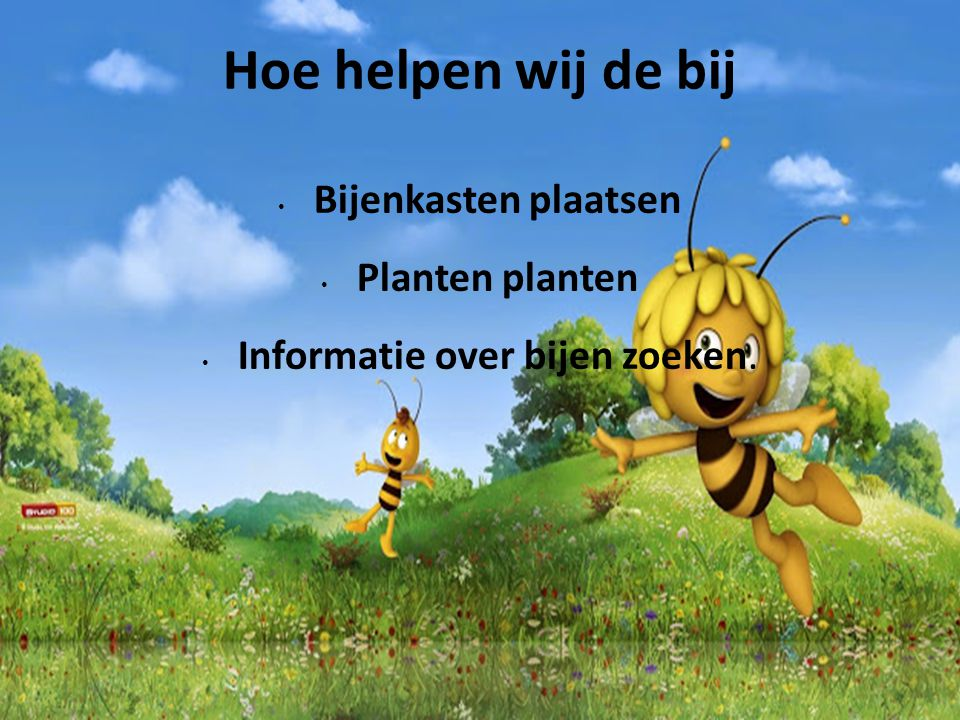 Citaten Over Bijen : Gemaakt door linde en tessel ppt video online download