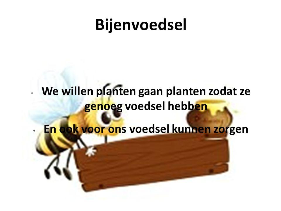 Bijenvoedsel We willen planten gaan planten zodat ze genoeg voedsel hebben.