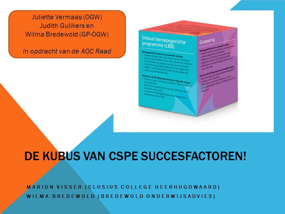 De kubus van CSPE succesfactoren!