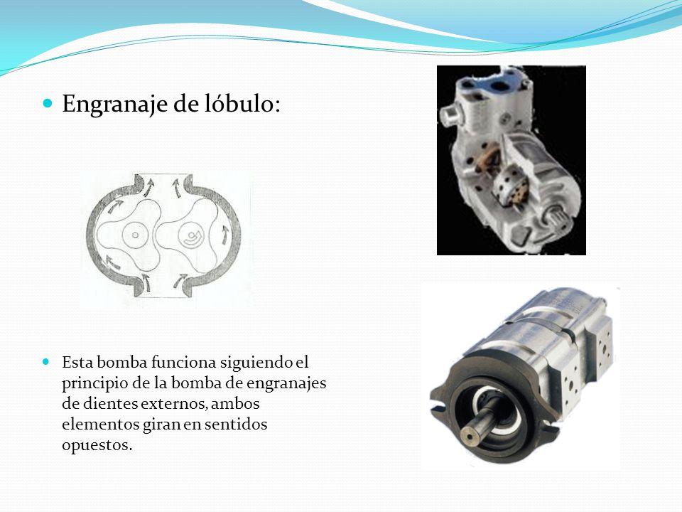 Engranaje de lóbulo: