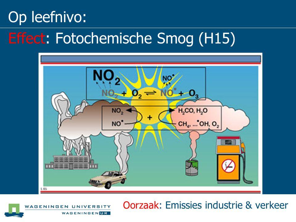 Op leefnivo: Effect: Fotochemische Smog (H15)