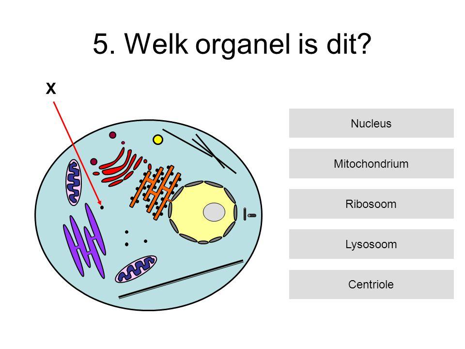5. Welk organel is dit X Nucleus Mitochondrium Ribosoom Lysosoom