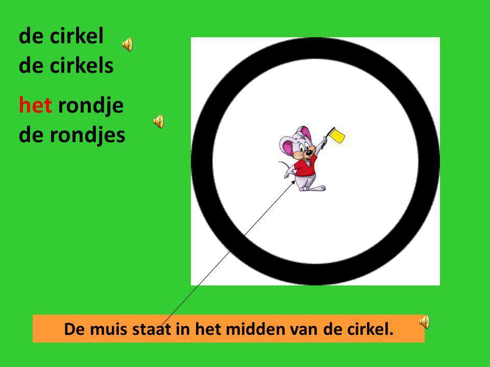De muis staat in het midden van de cirkel.