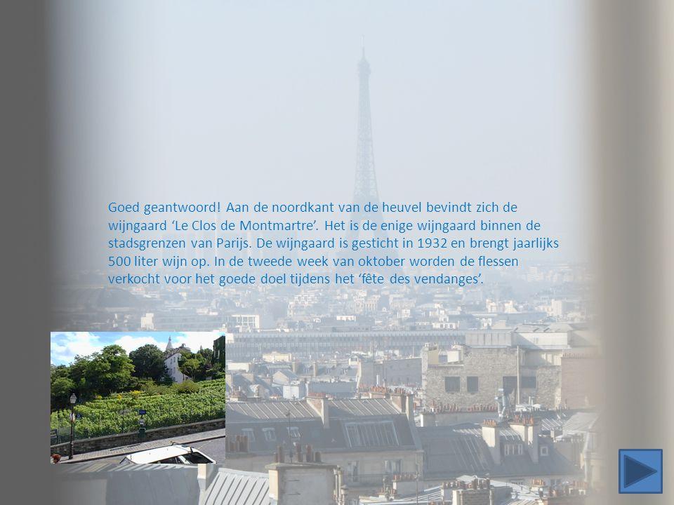 Goed geantwoord! Aan de noordkant van de heuvel bevindt zich de wijngaard 'Le Clos de Montmartre'. Het is de enige wijngaard binnen de stadsgrenzen van Parijs. De wijngaard is gesticht in 1932 en brengt jaarlijks 500 liter wijn op. In de tweede week van oktober worden de flessen verkocht voor het goede doel tijdens het 'fête des vendanges'.