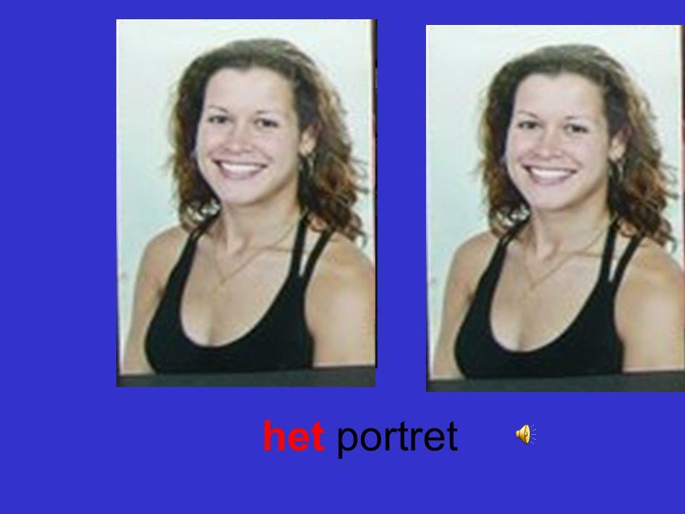 het portret