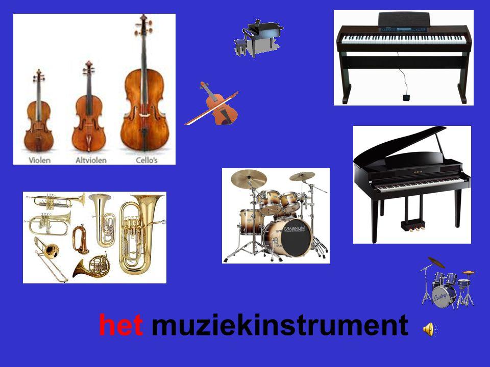 het muziekinstrument