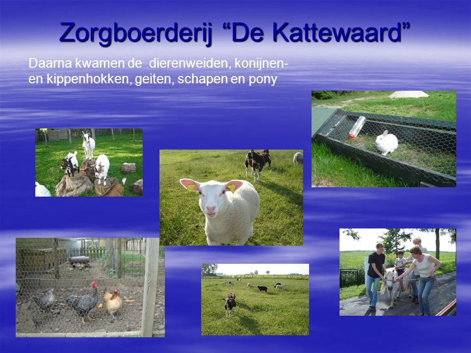 Zorgboerderij De Kattewaard