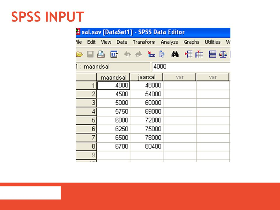 SPSS input