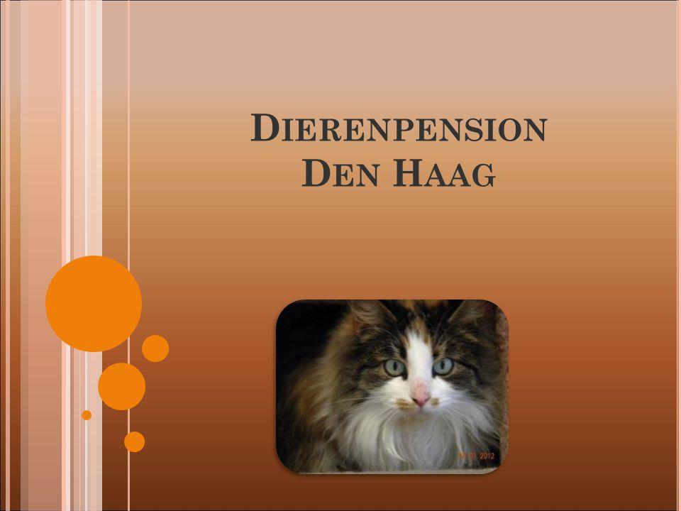 Dierenpension Den Haag