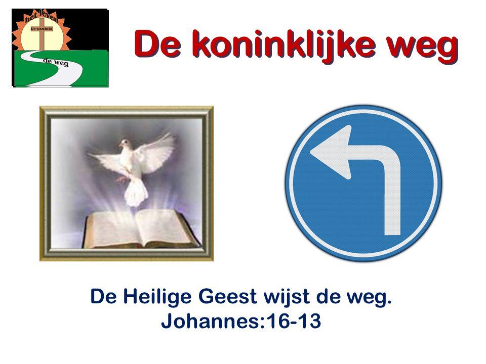 De Heilige Geest wijst de weg. Johannes:16-13
