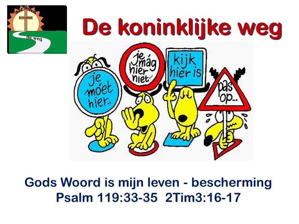 Gods Woord is mijn leven - bescherming Psalm 119:33-35 2Tim3:16-17