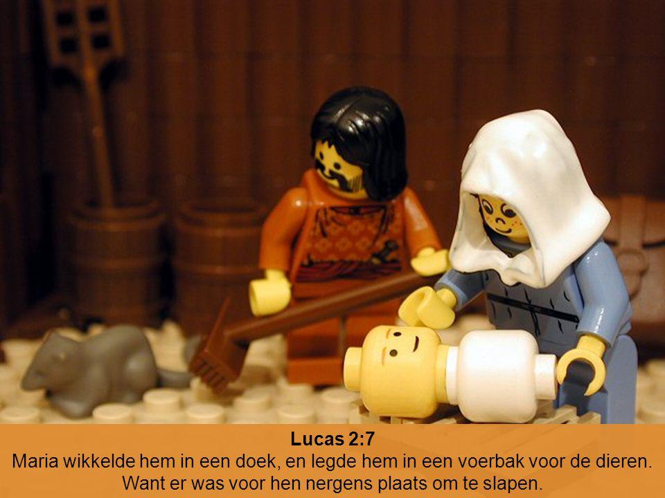 Lucas 2:7 Maria wikkelde hem in een doek, en legde hem in een voerbak voor de dieren.