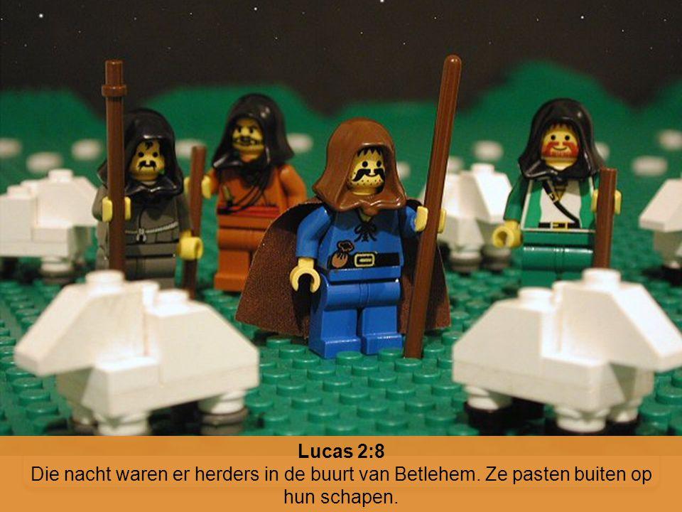 Lucas 2:8 Die nacht waren er herders in de buurt van Betlehem. Ze pasten buiten op hun schapen.