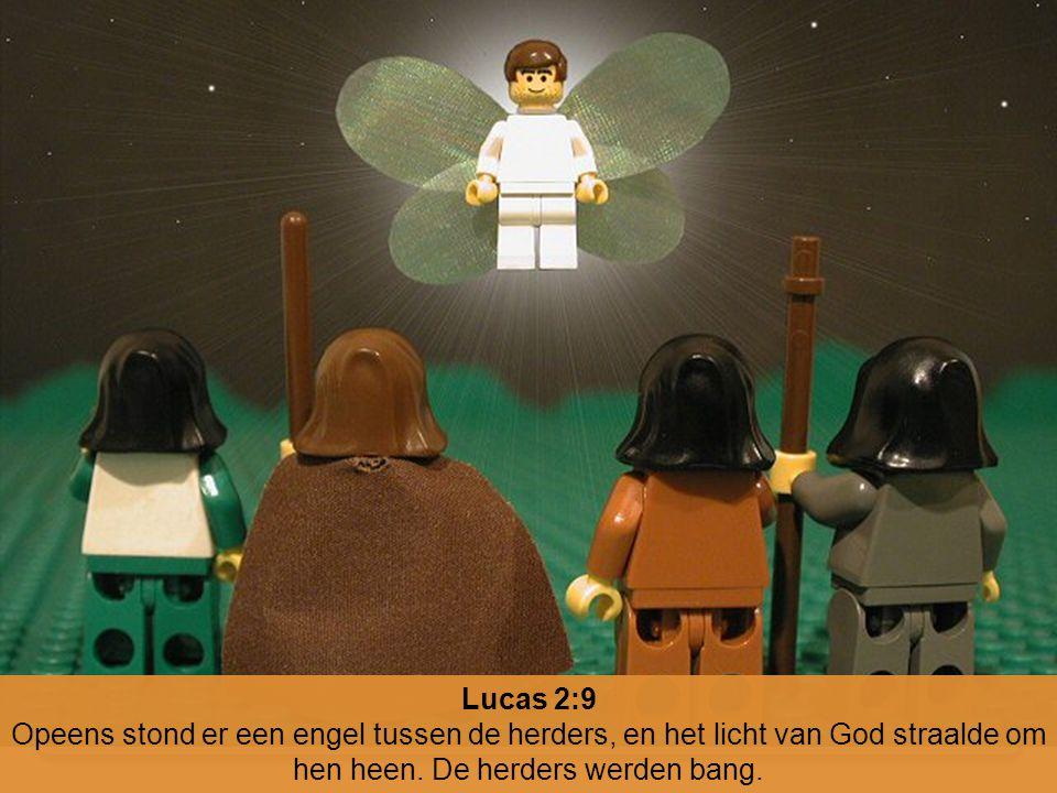 Lucas 2:9 Opeens stond er een engel tussen de herders, en het licht van God straalde om hen heen.
