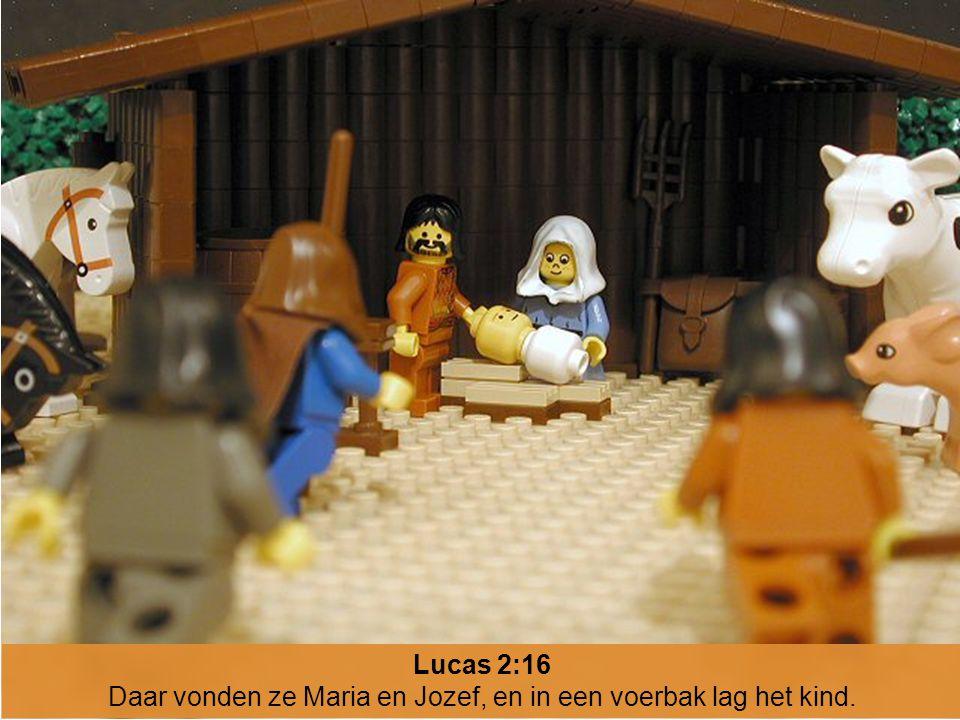 Daar vonden ze Maria en Jozef, en in een voerbak lag het kind.