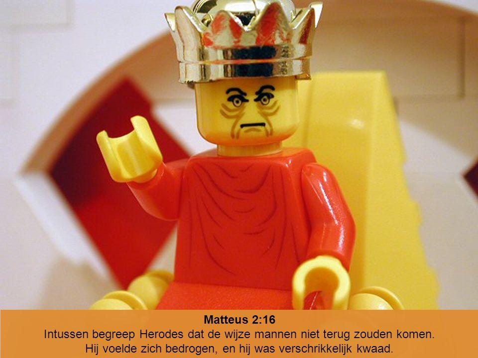 Intussen begreep Herodes dat de wijze mannen niet terug zouden komen.