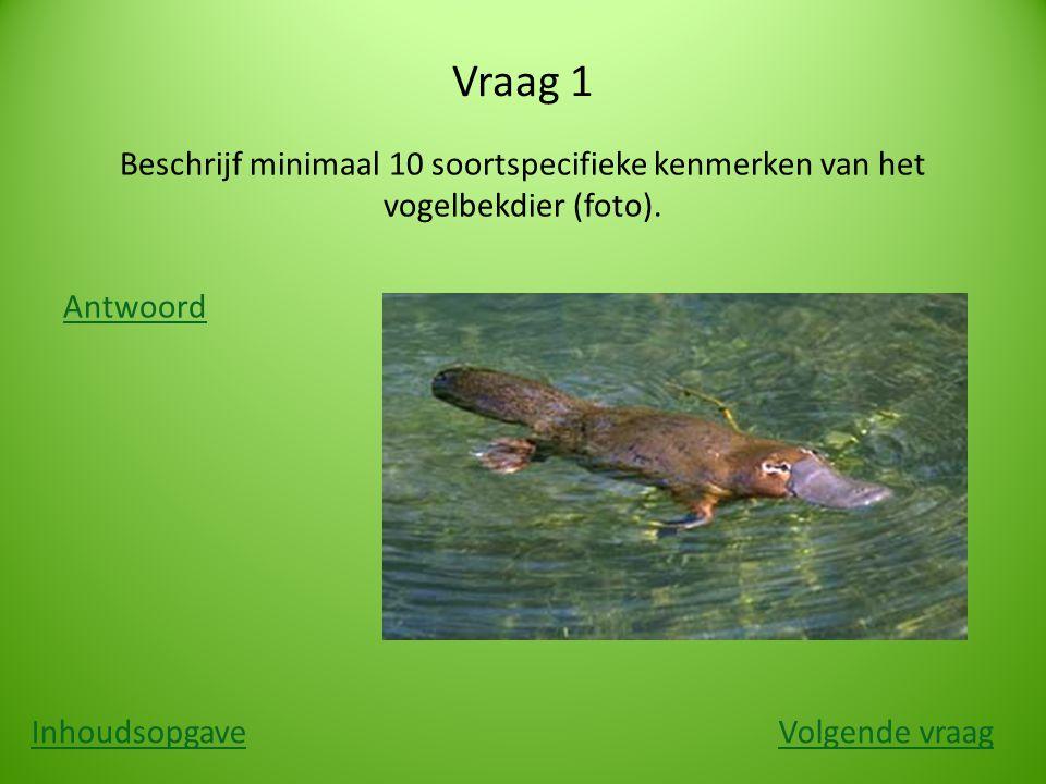 Vraag 1 Beschrijf minimaal 10 soortspecifieke kenmerken van het vogelbekdier (foto). Antwoord Inhoudsopgave.