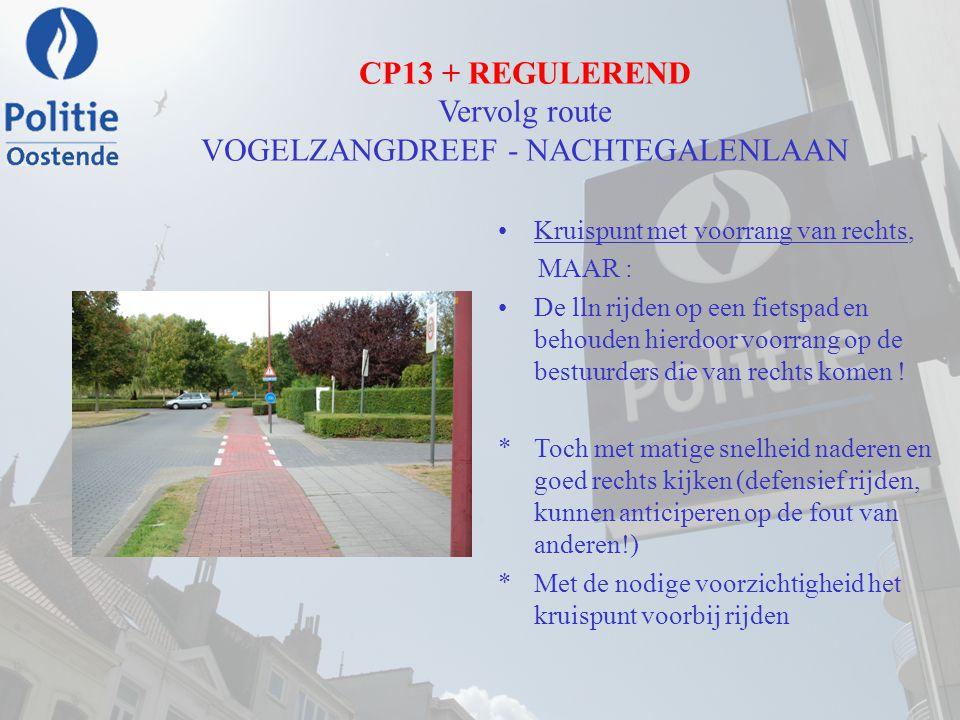 CP13 + REGULEREND Vervolg route VOGELZANGDREEF - NACHTEGALENLAAN