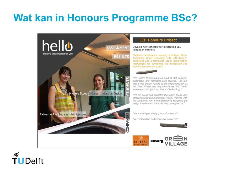 Wat kan in Honours Programme BSc