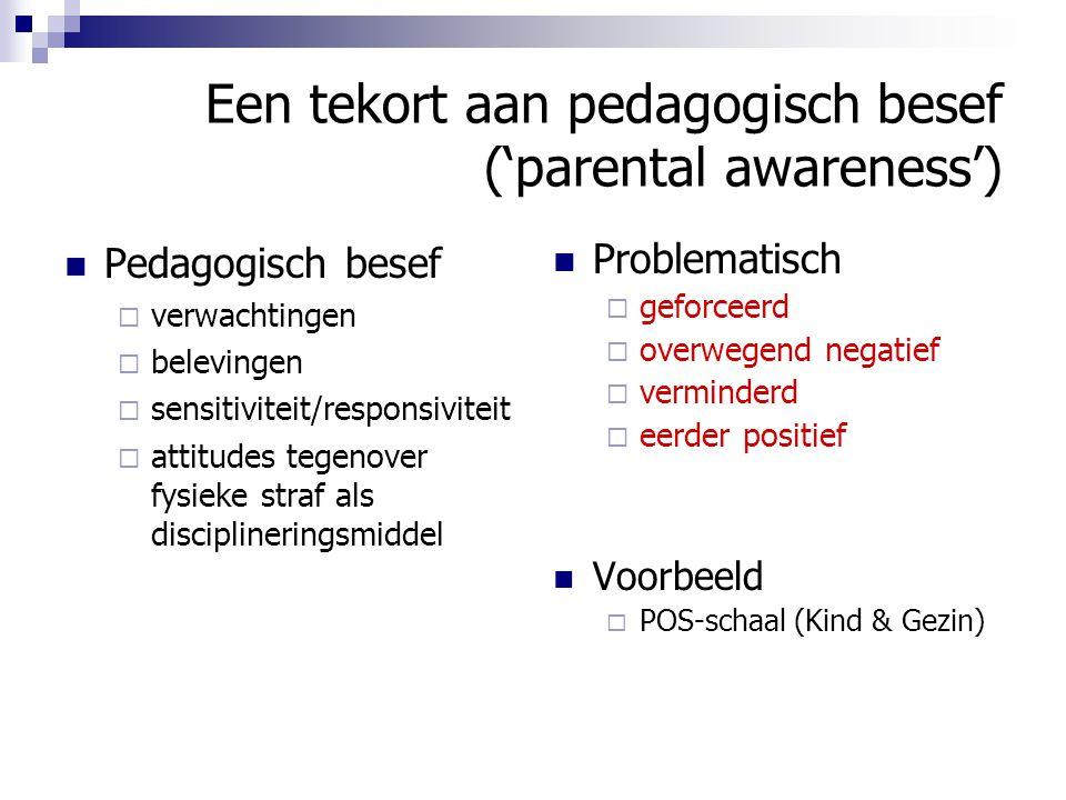 Een tekort aan pedagogisch besef ('parental awareness')