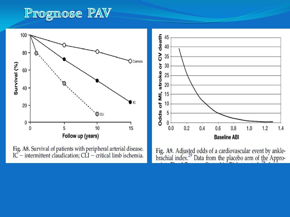Prognose PAV