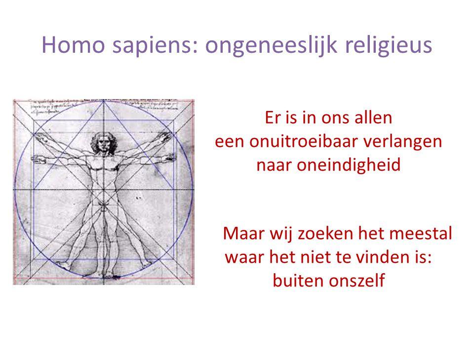 Homo sapiens: ongeneeslijk religieus