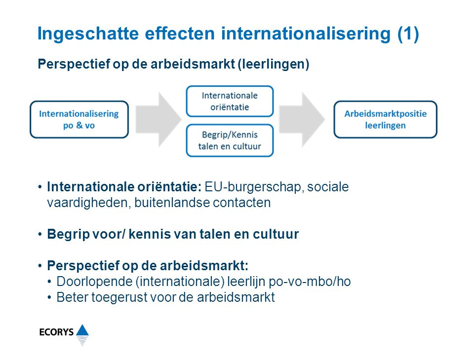 Ingeschatte effecten internationalisering (1)