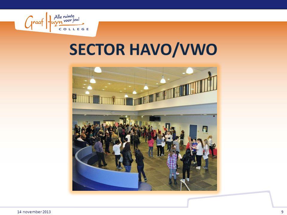 SECTOR HAVO/VWO 14 november 2013