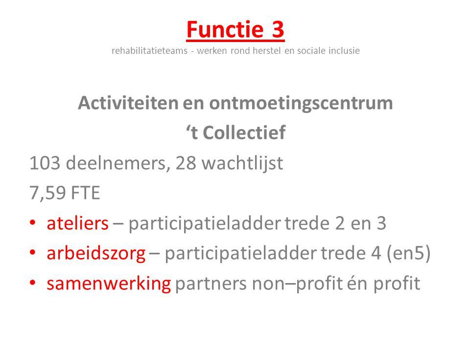 Functie 3 rehabilitatieteams - werken rond herstel en sociale inclusie