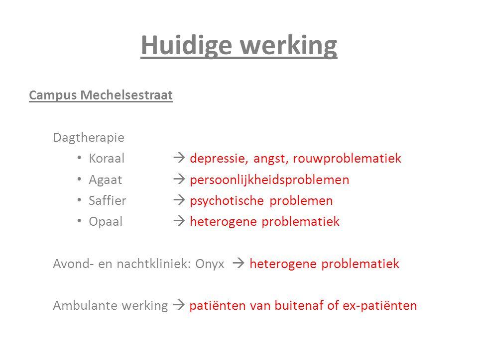 Huidige werking Campus Mechelsestraat Dagtherapie