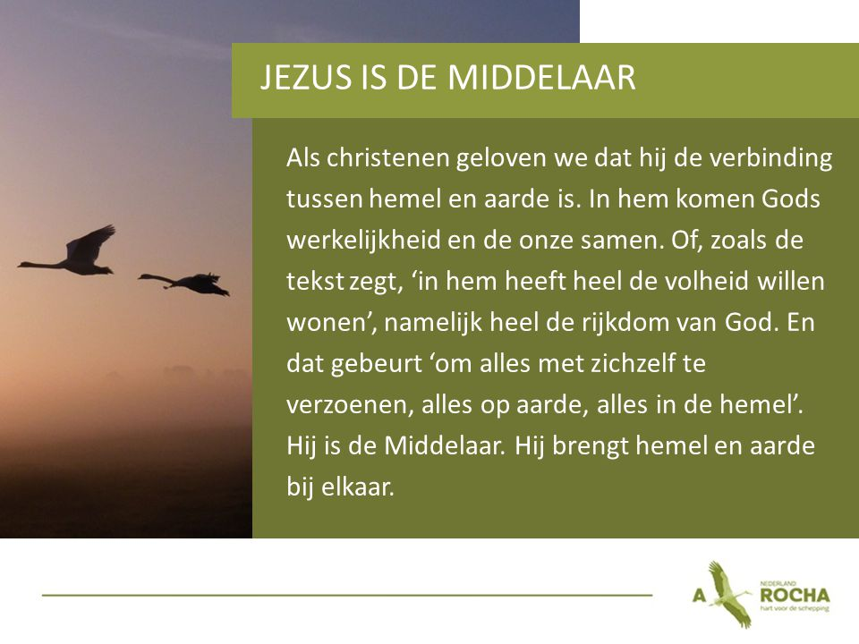 JEZUS IS DE MIDDELAAR