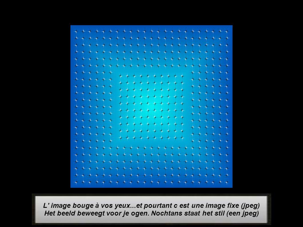 L image bouge à vos yeux...et pourtant c est une image fixe (jpeg)