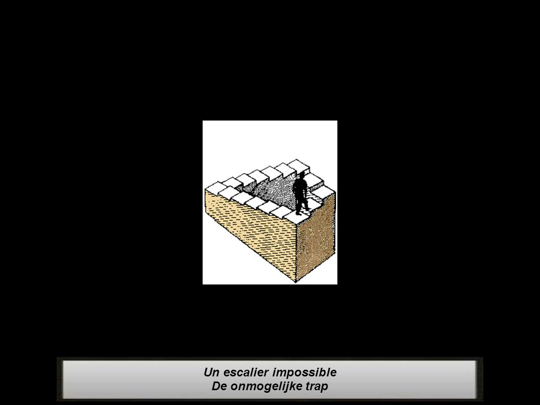 Un escalier impossible