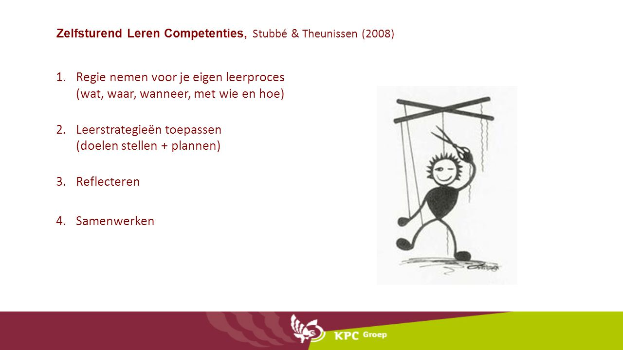 Zelfsturend Leren Competenties, Stubbé & Theunissen (2008)