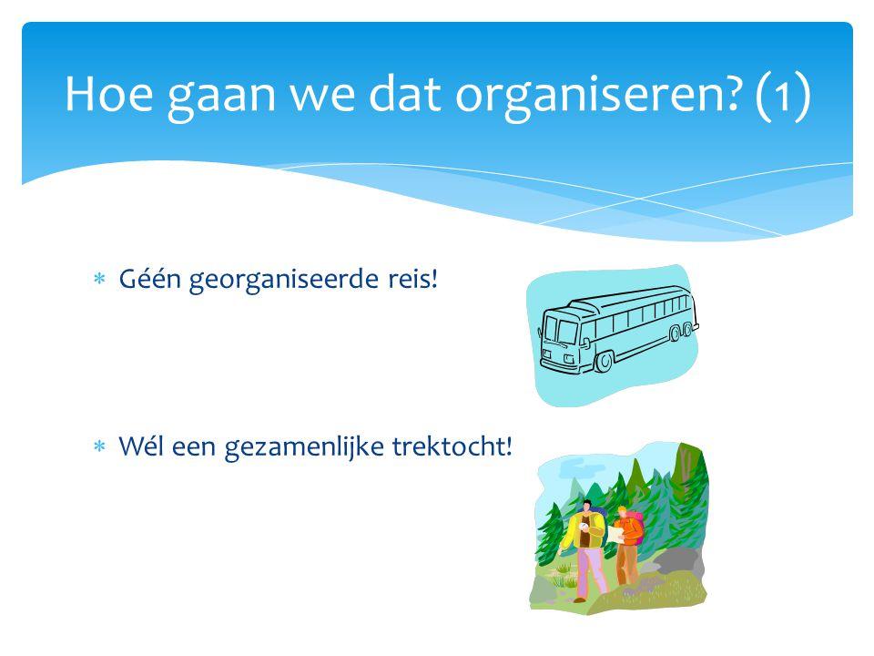 Hoe gaan we dat organiseren (1)