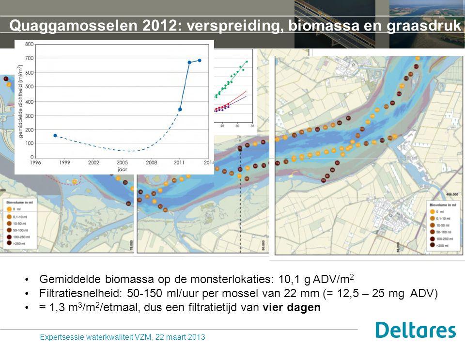 Quaggamosselen 2012: verspreiding, biomassa en graasdruk