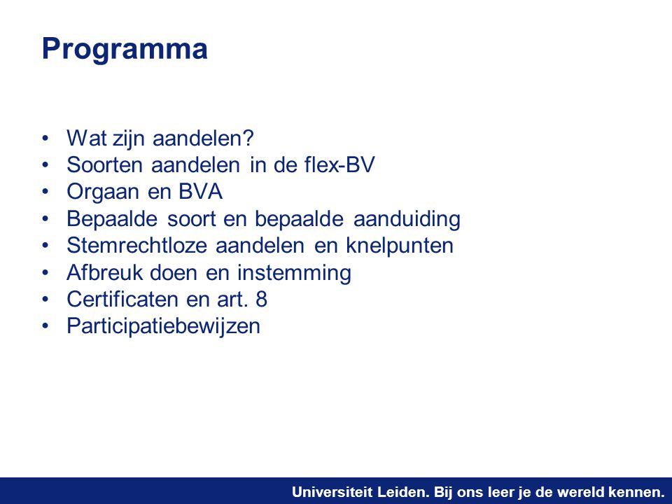 Programma Wat zijn aandelen Soorten aandelen in de flex-BV