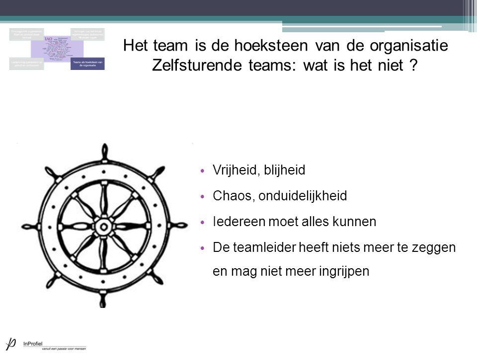 Het team is de hoeksteen van de organisatie Zelfsturende teams: wat is het niet