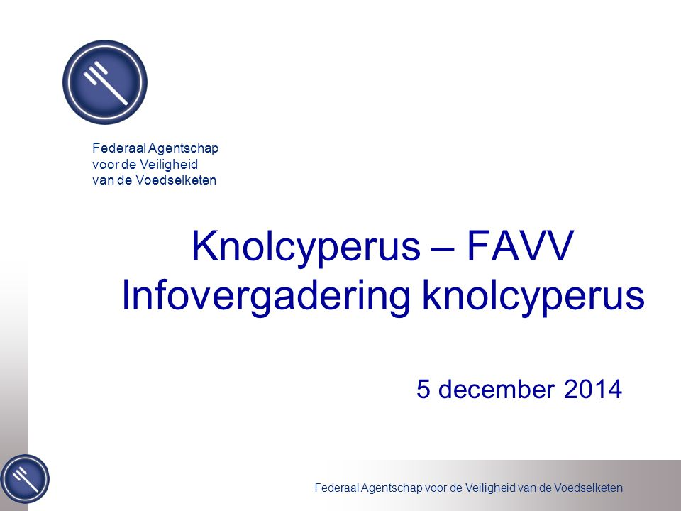 Knolcyperus – FAVV Infovergadering knolcyperus