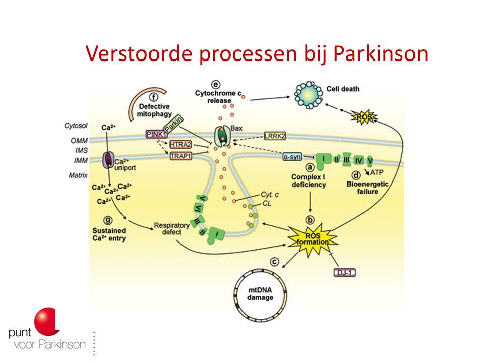 Verstoorde processen bij Parkinson