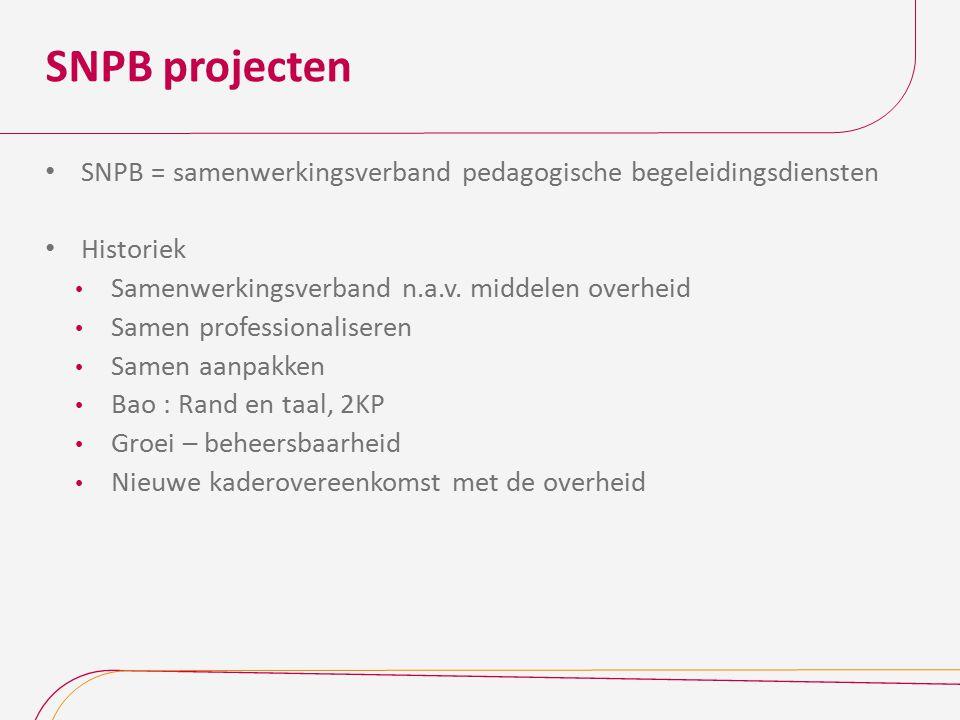 SNPB projecten SNPB = samenwerkingsverband pedagogische begeleidingsdiensten. Historiek. Samenwerkingsverband n.a.v. middelen overheid.