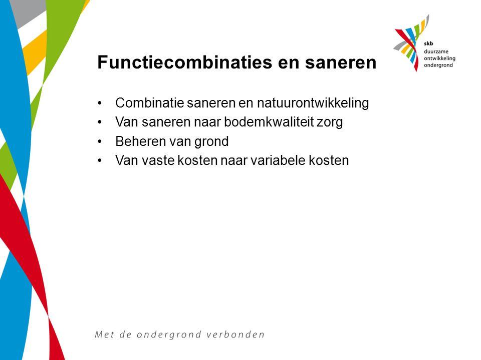 Functiecombinaties en saneren