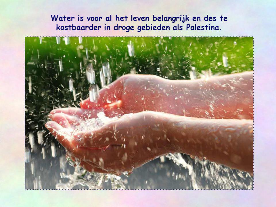 Water is voor al het leven belangrijk en des te kostbaarder in droge gebieden als Palestina.