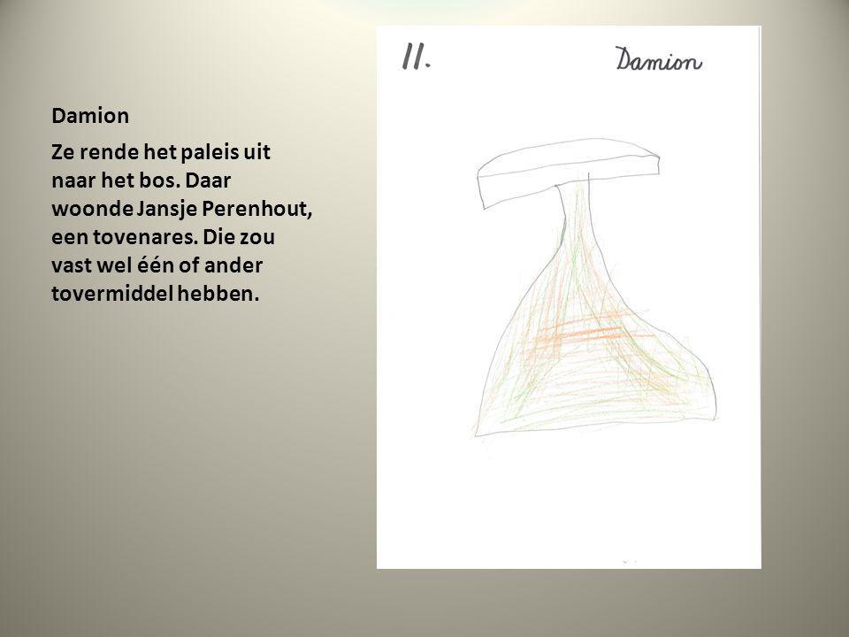 Damion Ze rende het paleis uit naar het bos. Daar woonde Jansje Perenhout, een tovenares.