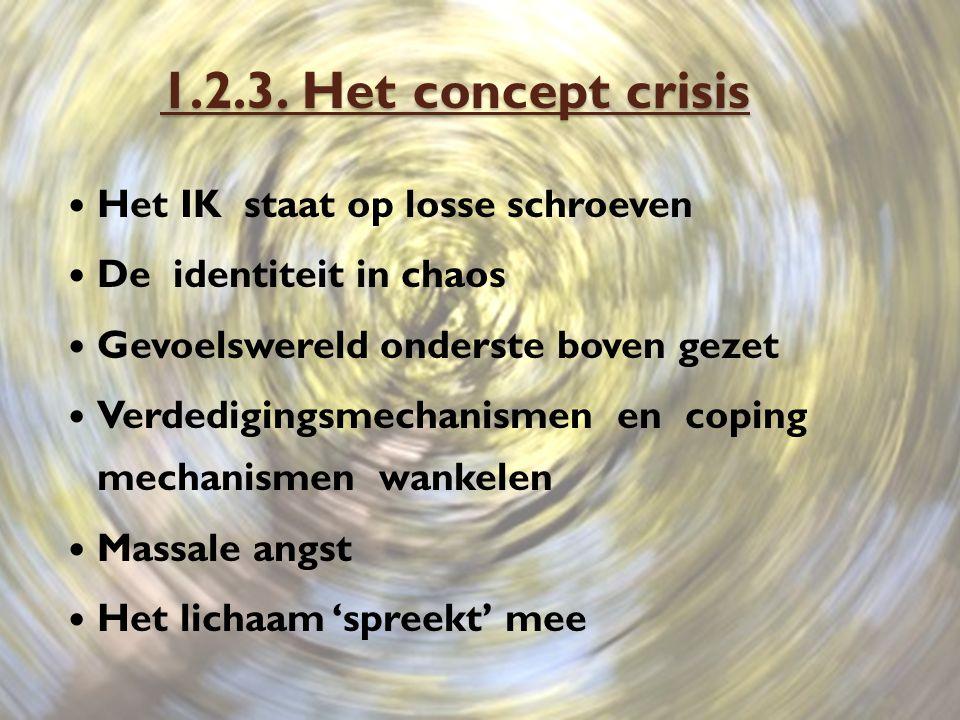 1.2.3. Het concept crisis Het IK staat op losse schroeven