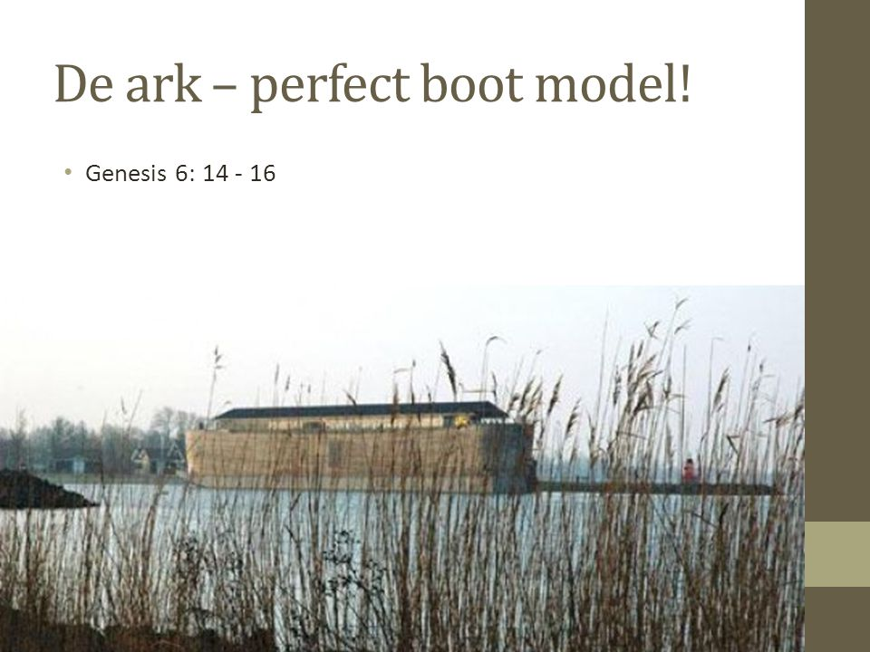 De ark – perfect boot model!
